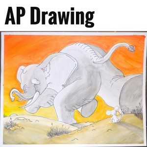 AP Drawing