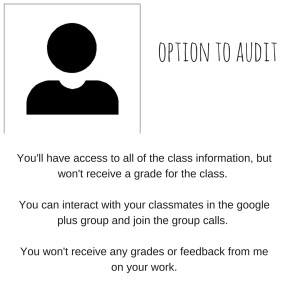 option to audit
