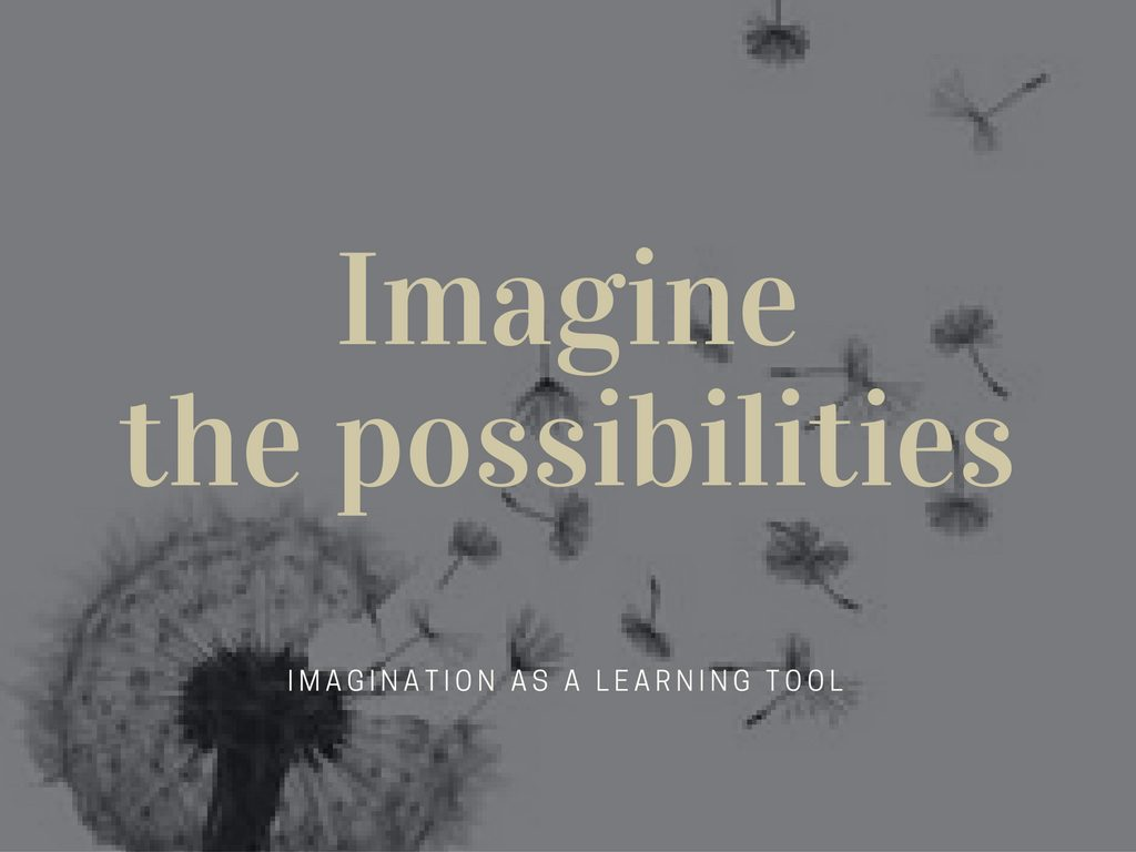 imaginethe-possibilities